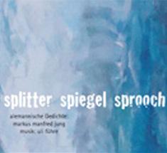 Splitter Sprooch Spiegel - 2010